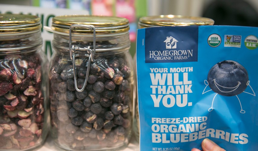 homegrown organics freeze dried blueberries